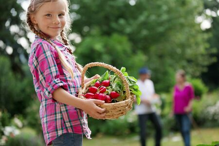 twee: Girl holding basket with red radishes