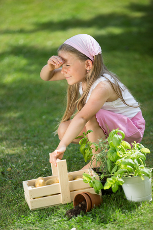 twee: Girl in garden with herbs and crate of potatoes