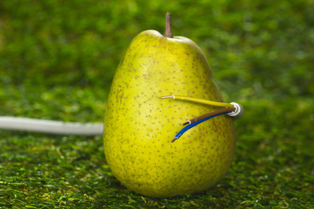 ecological problem: Pear and power cable, Eco-Power