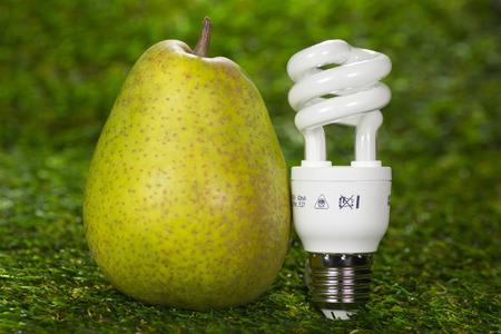 ahorro energia: L�mpara ahorro de energ�a y pera Foto de archivo