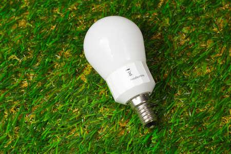 ahorro energia: L�mpara de ahorro de energ�a en la hierba Foto de archivo