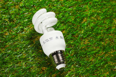 risparmio energetico: Lampada su erba risparmio energetico