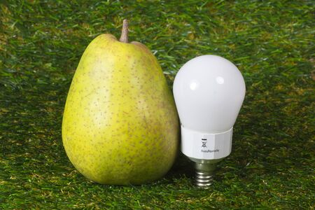 ecological problem: Energy saving lamp and pear