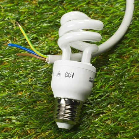 ecological problem: Energy saving lamp and power cable on grass