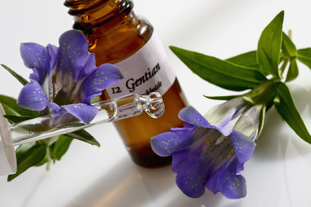 Gentian and pipette, apothecary flask