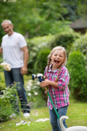regar las plantas: Plantas del padre y de la hija de riego en el jard�n Foto de archivo