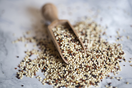 tricolor: Quinoa tricolor and wooden shovel Stock Photo