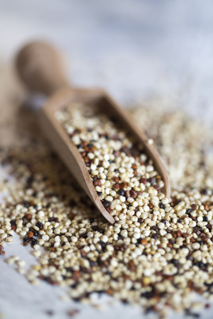 Quinoa tricolor and wooden shovel Stock Photo - 38582091