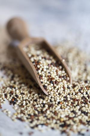 Quinoa tricolor and wooden shovel Standard-Bild