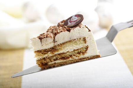 cream on cake: Pastel de crema de Navidad con el servidor de la torta