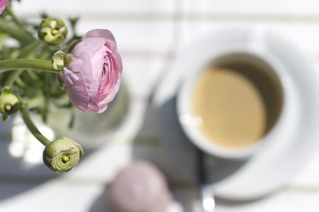 persian buttercup: Pink Persian buttercup and cup of coffee with meringue biscuit Stock Photo