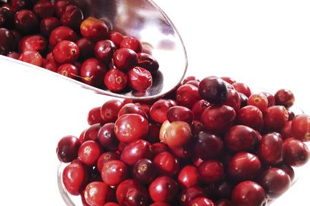 vaccinium macrocarpon: Cranberries, Vaccinium macrocarpon in bowl and on small shovel
