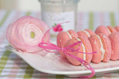 stuffing: Macarons with chocolate raspberry stuffing on white plate