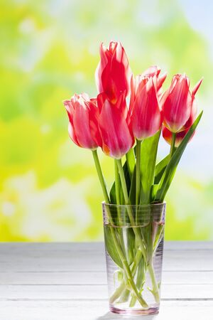 Bouquet Of Pink Tulips In Vase Copy Space Stock Photo Picture And
