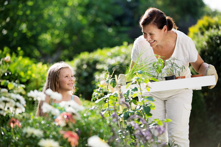 family gardening: Girl and granny planting herbs in garden