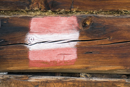 marking up: Austria, Salzburger Land, color marking on wooden beam, close up