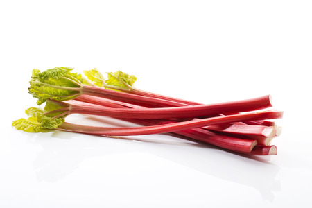Rhubarb Standard-Bild