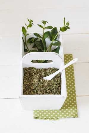 pepper mint: Pepper mint, fresh and dried in wooden box Stock Photo