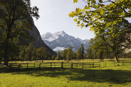 mountainscape: Austria, Karwendel, Meadows  in mountain scenery