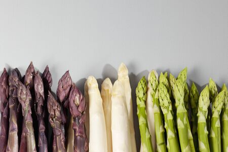 sorts: Sorts of asparagus, purple, white and green, gray background