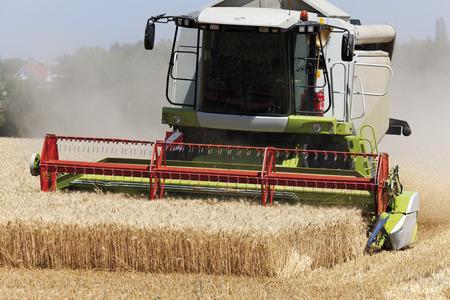 cosechadora: Alemania, Renania del Norte-Westfalia, Cosechadoras en el campo de trigo