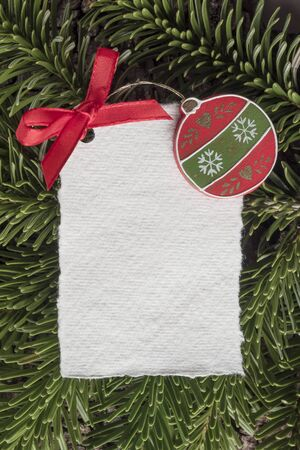 evergreens: Christmas, blank card on evergreens Stock Photo