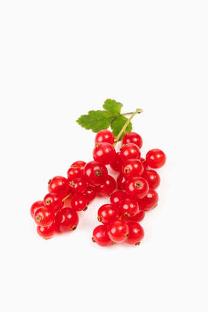 red currants: Red currants on white background