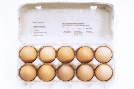 egg box: Organic Eggs in egg box