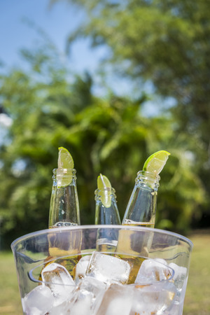 Botellas de cerveza con rodajas de limón en un cubo de hielo Foto de archivo