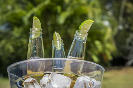 ice bucket: Beer bottles with lime slices in ice bucket Stock Photo