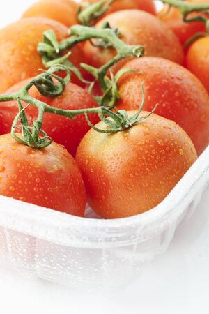 plastic container: Fresh tomatoes in plastic container on white background Stock Photo