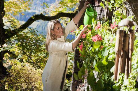 regar las plantas: Austria, Salzburg, Flachau, plantas jóvenes mujer de riego en el jardín de la granja