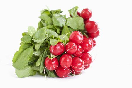 bundle: Bundle of red radish on white