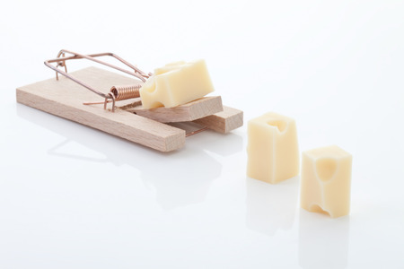 decoy: Mousetrap with cheese on white