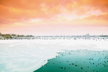 ice covered: Germany, Hamburg, ice covered Aussenalster during winter