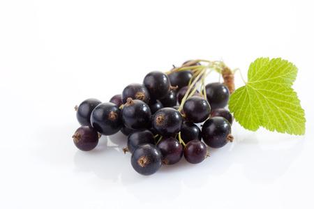 black currants: Black currants, white background