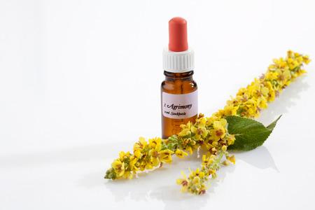 キンミズヒキ、バッハの花のアポセカリー フラスコ