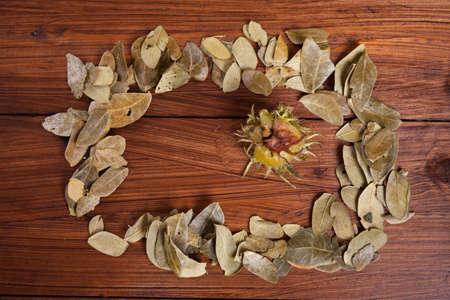 autumnally: Autumn leaves and nut on wood