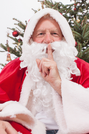 only man: Santa Claus with  smiling, portrait Stock Photo
