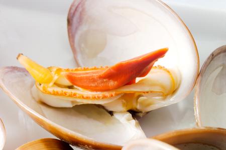 venus: Venus clam