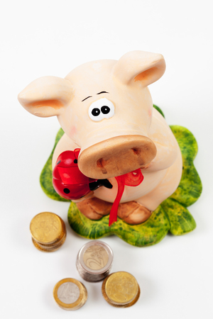 mojo: Piggy bank with Euro on white background