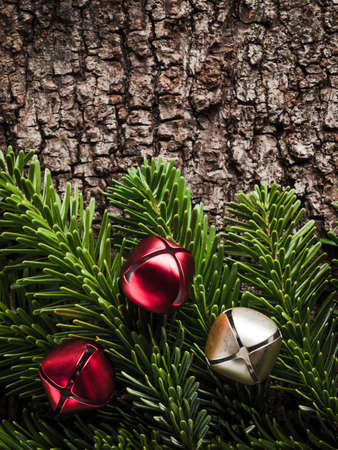 evergreens: Christmas decoration, bells, evergreens on bark