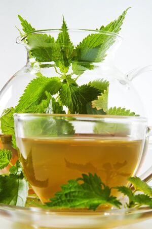 stinging: Stinging nettle tea, glass and teapot