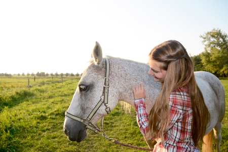 stroking: Young woman stroking horse
