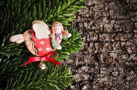 evergreens: Christmas decoration on bark, evergreens, angel