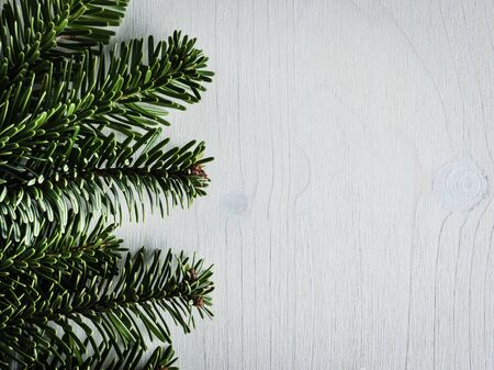 evergreens: Christmas decoration, evergreens, white wood