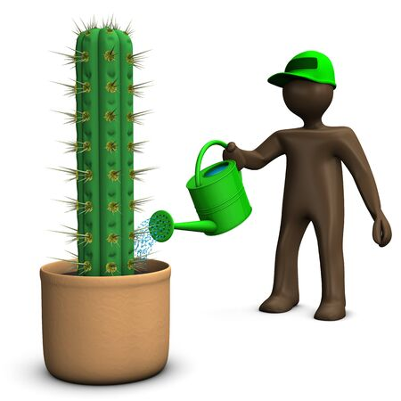 manikin: Gardener manikin watering cactus with can, white background, 3D rendering