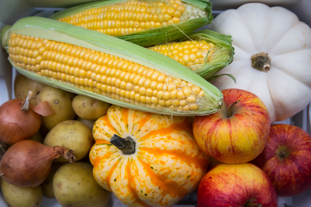 autumnally: Organic vegetables and fruits, apple, maize, onions and pumpkins