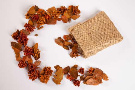jute sack: Sacco di iuta e foglie d'autunno Archivio Fotografico