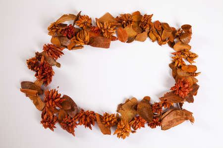 autumnally: Autumn leaves, wreath, white background, copy space Stock Photo